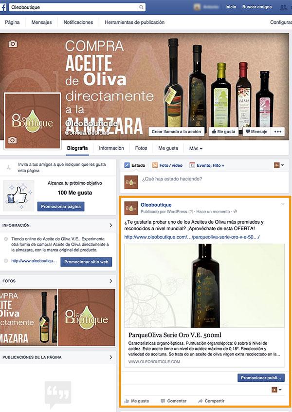 Auto publicar producto WooCommerce en fanpage Facebook