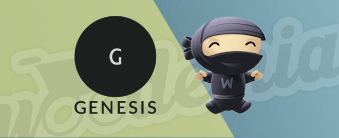 Por qué no recomiendo usar Genesis con WooCommerce