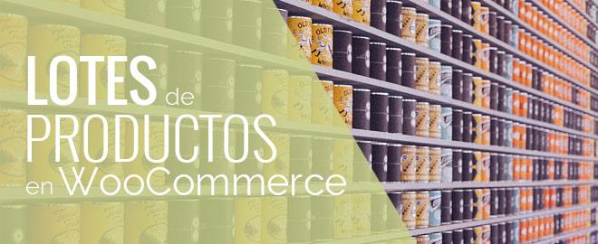 Vender productos por lotes en WooCommerce